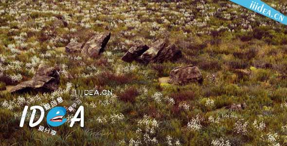 unity3d hq photographic textures grass pack vol 1 01 - HQ Textures Grass Pack v1.6 - Unity草纹理摄影包