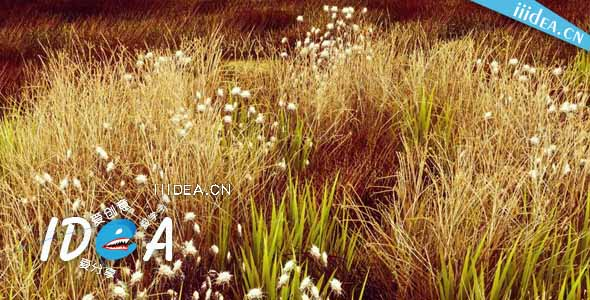 unity3d hq photographic textures grass pack vol 1 03 - HQ Textures Grass Pack v1.6 - Unity草纹理摄影包