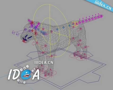 Rapid Rig Modular - Maya角色动画绑定插件Rigging Tools Rapid Rig For Maya 2015-2017